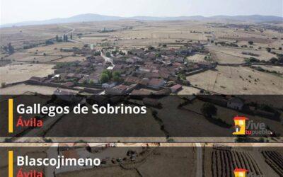 Gallegos de Sobrinos