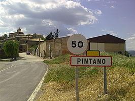 Los Pintanos