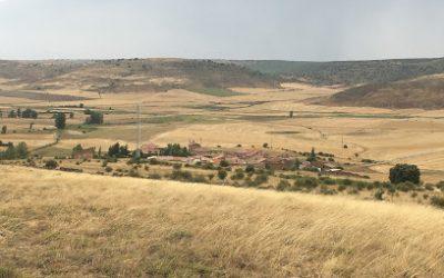 Tordelrábano