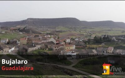 Bujalaro